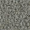 Coronet Cornerstone Sparkling Berber Indoor Carpet