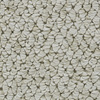 Coronet Cornerstone Galaxy Berber Indoor Carpet
