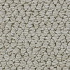 Coronet Cornerstone Luminous Berber Indoor Carpet