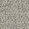 Coronet Cornerstone Shooting Star Berber Indoor Carpet