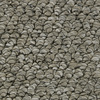 Coronet Cornerstone Powerhouse Berber Indoor Carpet