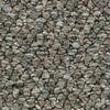 Coronet Cornerstone Explosive Berber Indoor Carpet