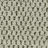 Coronet Cornerstone Boost Textured Indoor Carpet