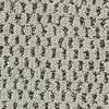 Coronet Cornerstone Offering Textured Indoor Carpet