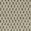 Coronet Cornerstone Cheer Textured Indoor Carpet