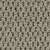 Coronet Cornerstone Inspiration Textured Indoor Carpet