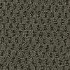 Coronet Cornerstone Uplift Textured Indoor Carpet
