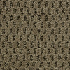 Coronet Cornerstone Adorn Textured Indoor Carpet