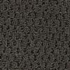 Coronet Cornerstone Dignify Textured Indoor Carpet