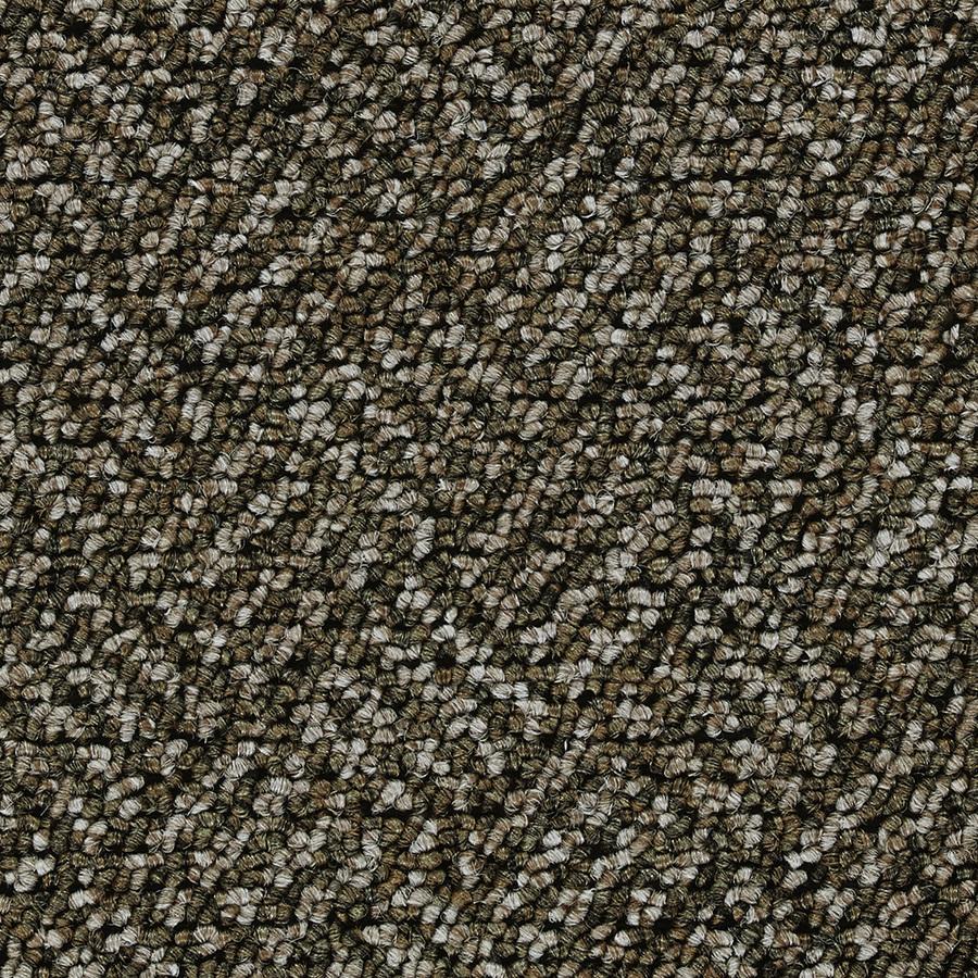 Shop Coronet Ol506 Rising Tide Star Fish Outdoor Carpet at ...