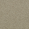 Coronet Feature Buy Lantern Glow Textured Indoor Carpet