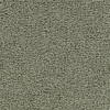 Coronet Feature Buy Ivy Trellis Textured Indoor Carpet