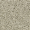 Coronet Feature Buy Sandy Beach Textured Indoor Carpet