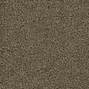 Coronet Feature Buy Leather Saddle Textured Indoor Carpet