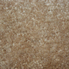 Coronet Feature Buy Brass Textured Indoor Carpet