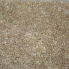Coronet Feature Buy Khaki Textured Indoor Carpet