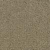Coronet Feature Buy Medal Of Honor Textured Indoor Carpet