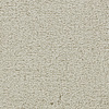 Coronet Feature Buy Old Lace Textured Indoor Carpet