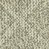 Coronet N/A Willowdale Berber Indoor Carpet