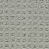Coronet Honorable Pearl Grey Pattern Indoor Carpet