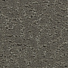 Coronet Trustworthy Silhouette Pattern Indoor Carpet