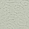 Coronet Trustworthy Lambs Wool Pattern Indoor Carpet