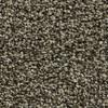 Coronet Ignite Quench Textured Indoor Carpet