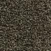 Coronet Ignite Electric Textured Indoor Carpet