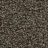 Coronet Ignite Blaze Textured Indoor Carpet