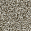 Coronet Kindle Glow Textured Indoor Carpet