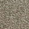Coronet Kindle Energize Textured Indoor Carpet
