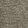Coronet Kindle Vitalize Textured Indoor Carpet