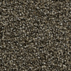 Coronet Kindle Blaze Textured Indoor Carpet