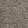 Coronet Inflame Vitalize Textured Indoor Carpet