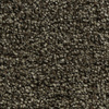 Coronet Inflame Electric Textured Indoor Carpet