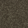 Coronet Centric I Double Espresso Textured Indoor Carpet