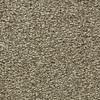 Coronet Centric I Warm Stone Textured Indoor Carpet