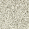 Coronet Centric I Mellowed Ivory Textured Indoor Carpet