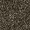 Coronet Centric II Double Espresso Textured Indoor Carpet