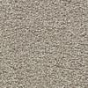 Coronet Centric II Heirloom Beige Textured Indoor Carpet
