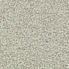 Coronet Centric II Coastal Path Textured Indoor Carpet