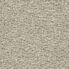Coronet Centric II Seashell Textured Indoor Carpet