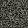 Coronet Enchantress Magic Potion Textured Indoor Carpet