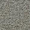 Coronet Enchantress Mushroom Textured Indoor Carpet