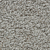 Coronet Enchantress London Fog Textured Indoor Carpet