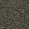 Coronet Enchantress Nest Box Textured Indoor Carpet