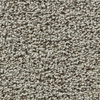 Coronet Enchantress Silent Flight Textured Indoor Carpet
