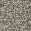 Coronet Enchantress Intuition Textured Indoor Carpet