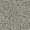 Coronet Enchantress Wisdom Textured Indoor Carpet