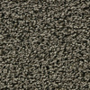 Coronet Enchantress Hoot Owl Textured Indoor Carpet